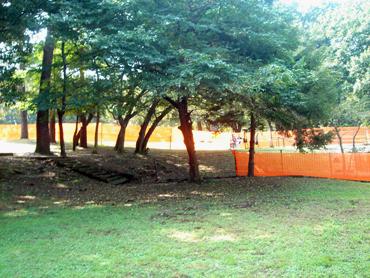 Hydepark1
