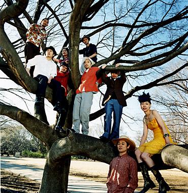 Df_tree